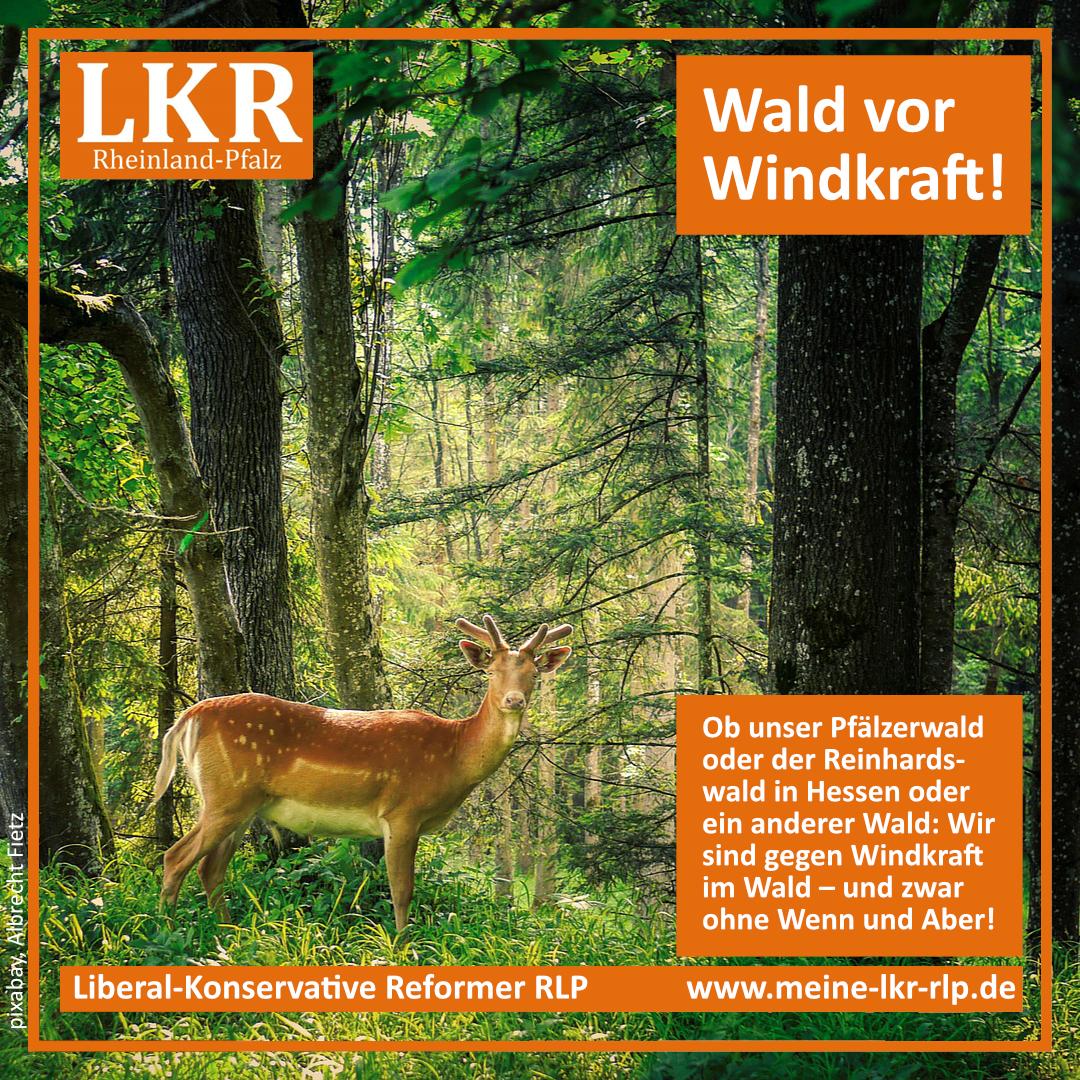 LKR_Wald-vor-Windkraft